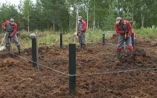Фундамент на болотистой почве своими руками – свайный, ленточный, плитный