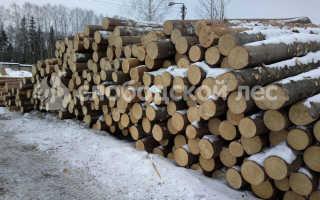 Зимний и летний лес для строительства дома – в чем отличия и что выбрать