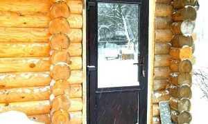 Банные стеклянные двери: быть или не быть?